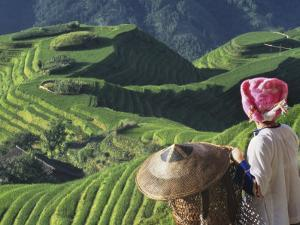 Zhuang Girl with Rice Terraces, China by Keren Su