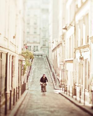 The Bicycle Thief by Keri Bevan