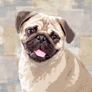 Pug by Keri Rodgers