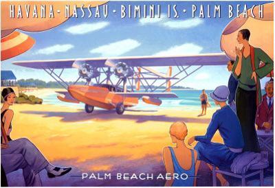 Palm Beach Aero by Kerne Erickson