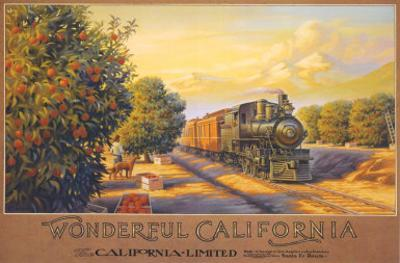 Wonderful California by Kerne Erickson