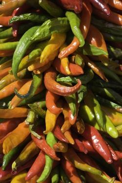 Chile Peppers by Kerrick James