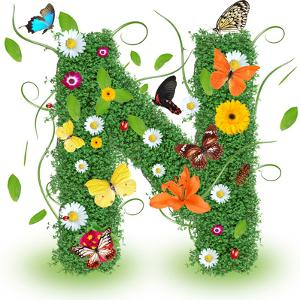 """Beautiful Spring Letter """"N"""" by Kesu01"""