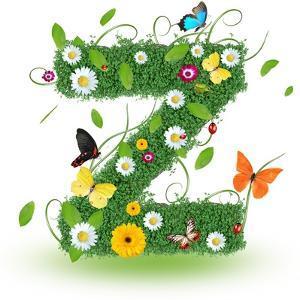 """Beautiful Spring Letter """"Z"""" by Kesu01"""