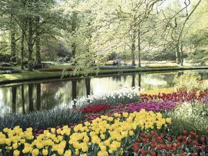 Keukenhof Gardens, Lissa, Netherlands