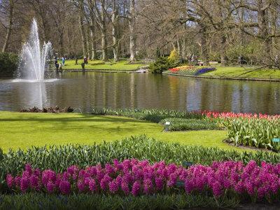 https://imgc.allpostersimages.com/img/posters/keukenhof-park-and-gardens-near-amsterdam-netherlands-europe_u-L-P7NUGW0.jpg?p=0