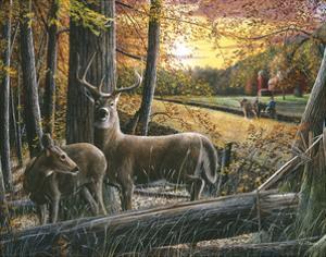 Autumn Harvest by Kevin Daniel