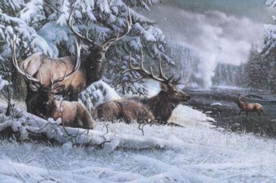 Late Winter Gathering