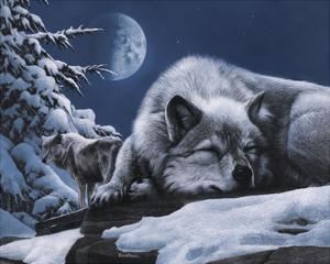 Sleepless Night by Kevin Daniel