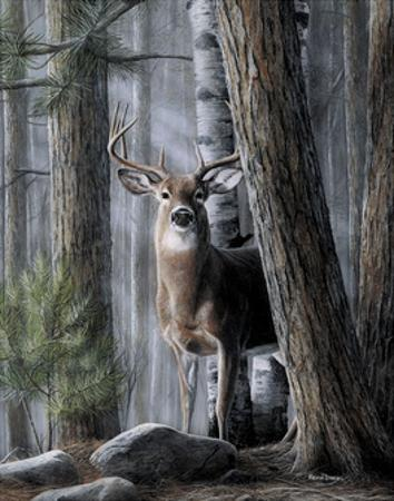 Solitary Buck