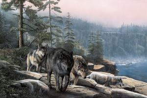 Stalking the Bluffs by Kevin Daniel