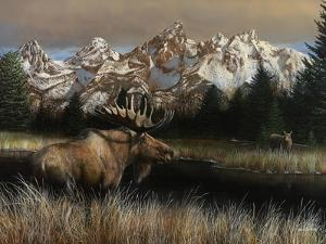 Teton Majesty by Kevin Daniel