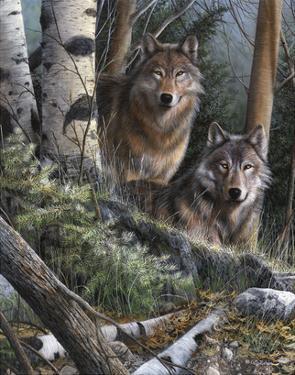 Watchful Eyes by Kevin Daniel