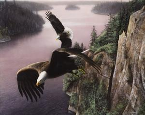 Wings Over the St. Croix by Kevin Daniel