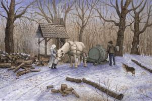 Maple Syrup Time by Kevin Dodds