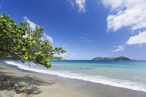 View of sandy beach, looking towards Little Tobago, Speyside, Tobago by Kevin Elsby