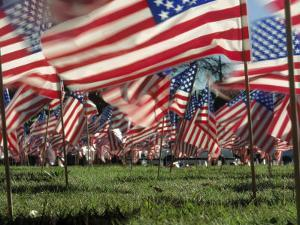 Grassy Field with American Flags Stuck in Ground by Kevin Leigh