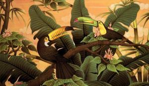 Toucans by Kevin McPherrin