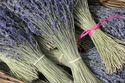 France, Provence Alpes Cote Dazur, Vaucluse, Roussillon. Lavender by Kevin Oke