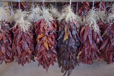 USA, Arizona, Sedona. Hanging dried chili peppers by Kevin Oke