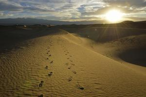 USA, California, Death Valley, Footprints on the dunes at the Mesquite Flat Sand Dunes. by Kevin Oke