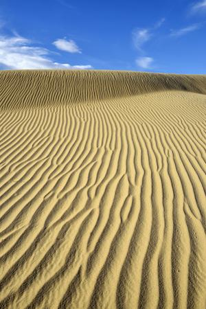 USA, California, Death Valley, Ripples in the sand, Mesquite Flat Sand Dunes. by Kevin Oke