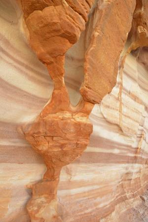 USA, Nevada. Valley of Fire State Park. Sculpted red sandstone by Kevin Oke