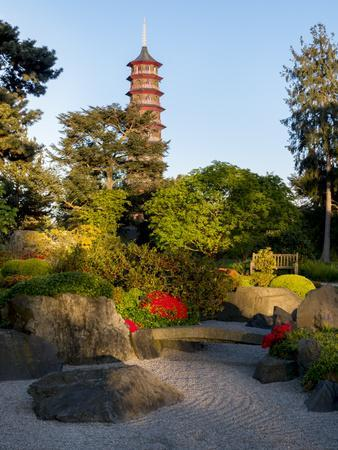 https://imgc.allpostersimages.com/img/posters/kew-gardens-pagoda_u-L-Q1AVHSU0.jpg?p=0