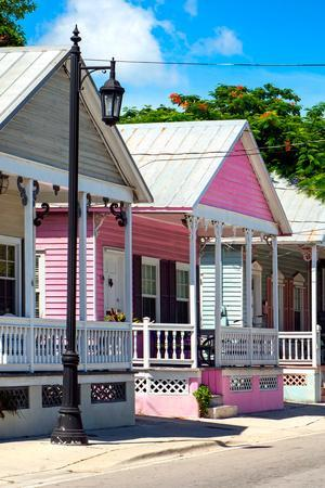 https://imgc.allpostersimages.com/img/posters/key-west-architecture-the-pink-house-florida_u-L-PZ5JSV0.jpg?p=0
