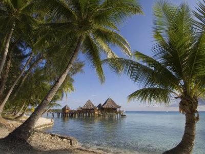 https://imgc.allpostersimages.com/img/posters/kia-ora-resort-rangiroa-tuamotu-archipelago-french-polynesia-pacific-islands-pacific_u-L-P2PZUH0.jpg?p=0