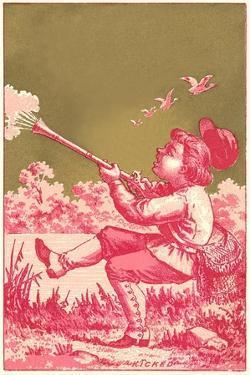 Kicked, Boy Shooting Birds