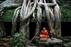 A Theraveda Buddhist Monk at the Ta Prohm Temple in the Angkor Complex by Kike Calvo