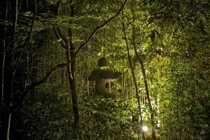 Bird House at a Local Garden in Kyoto by Kike Calvo
