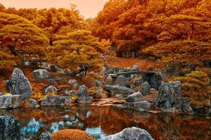 Fall Colors at the Pond of the Ninomaru Garden by Kike Calvo