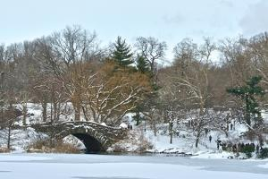 Panoramic of Central Park in the Aftermath of Winter Storm Juno by Kike Calvo