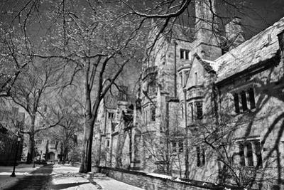 Winter Blizzard at Yale University by Kike Calvo