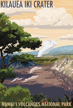 Kilauea Iki Crater, Hawaii Volcanoes National Park