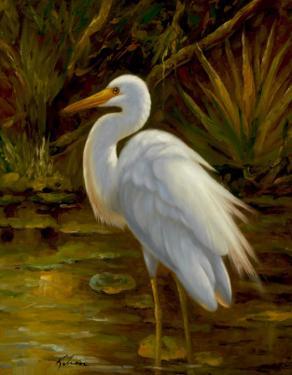 Tropical Egret II by Kilian