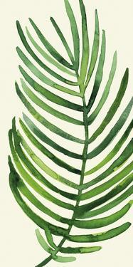 Tropical Palm Leaf IV by Kim Johnson