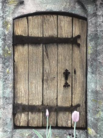 H.C. Cotswald Door and Tulips