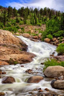 Waterfall Cascading down a Mountainside by Kim Kozlowski Photography LLC