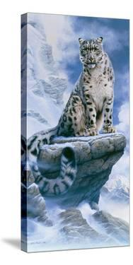 High Spirit - Snow Leopard by Kim Thompson