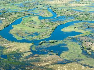 Aerial View of Floodplains, Water Channels, and Islands, Zambezi and Chobe Rivers, Namibia by Kim Walker