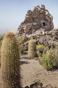Exterior View of the Funerary Chullpas Made from Volcanic Tufa at Necropolis by Kim Walker
