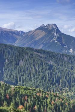 High Tatra Mountains, Tatra National Park, Zakopane, Poland, Europe by Kim Walker
