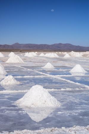 Salt Mounds by Kim Walker