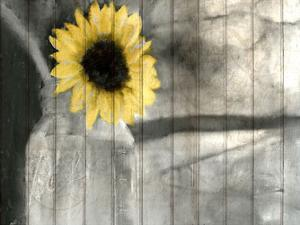 A Pop Of Yellow by Kimberly Allen