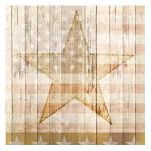 American Stars by Kimberly Allen