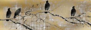 Black Birds by Kimberly Allen