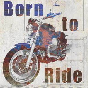 Born to Ride by Kimberly Allen